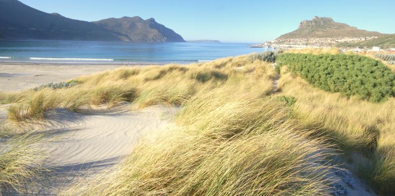 Hb dunes