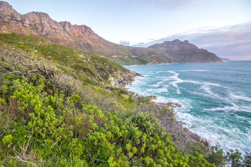 Chappies sunsetsep17 1